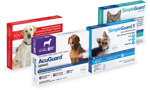 Vethical - Innovative Products for Exceptional Pet Health Care