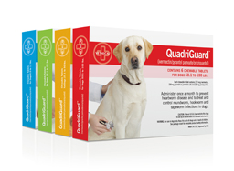 QuadriGuard® products